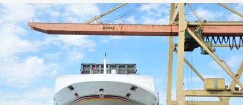 跨境电商合作有望成为中新贸易新亮点